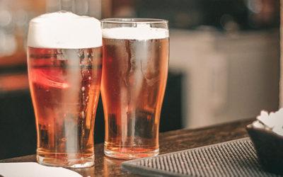 Facultad de Química investiga distintos tipos de levaduras para elaborar cervezas artesanales