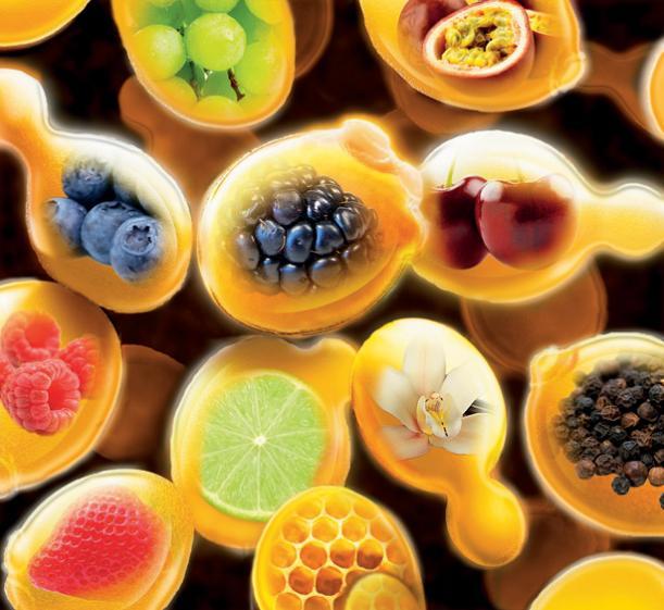 El desafío de los enólogos es no perder aromas, gustos y colores